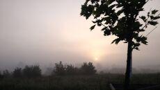 Poranne mgły nad Warszawą (Katarzyna Karpa/tvn24.pl)