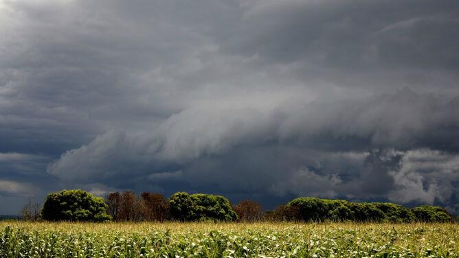 Pogoda na dziś: deszcz, burze, porywisty wiatr